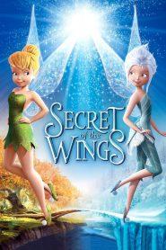 ความลับของปีกนางฟ้า Secret of the Wings (2012)