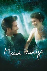 รักนี้มหัศจรรย์ Mood Indigo (2013)