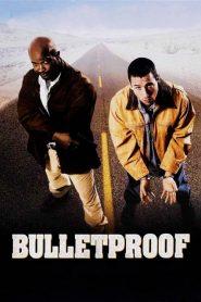 คู่ระห่ำ ซ่าส์ท้านรก Bulletproof (1996)