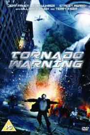 ทอร์นาโดเอเลี่ยนทลายโลก Alien Tornado (2012)