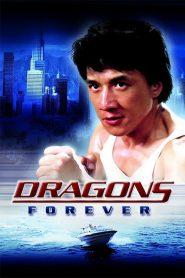 มังกรหนวดทอง Dragons Forever (1988)