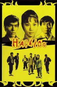พยัคฆ์สาวหมัดเหล็ก Hapkido Lady Kung Fu (1972)