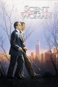ผู้ชายหัวใจไม่ปอกเปลือก Scent of a Woman (1992)