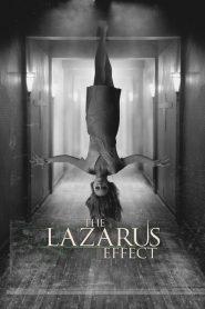 โปรเจกต์ชุบตาย The Lazarus Effect (2015)