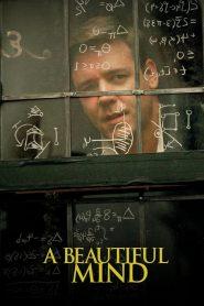 ผู้ชายหลายมิติ A Beautiful Mind (2001)