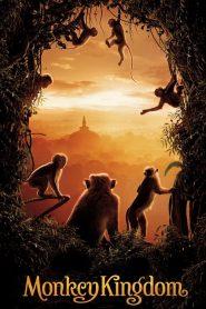 อาณาจักรลิง จากป่าไม้สู่ป่าเมือง Monkey Kingdom (2015)