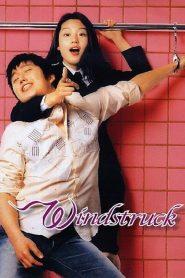 ยัยตัวร้ายกับนายเซ่อซ่า Windstruck (2004)