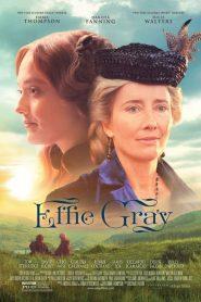 เอฟฟี่ เกรย์ ขีดชะตารักให้โลกรู้ Effie Gray (2014)