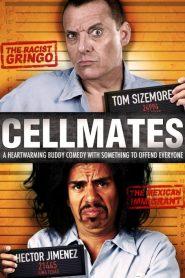 ทรามวัยหัวใจไม่จองจำ Cellmates (2012)