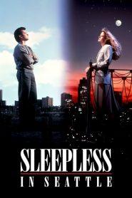 กระซิบรักไว้บนฟากฟ้า Sleepless in Seattle (1993)