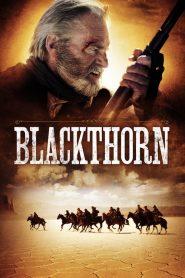 เสือลายคราม Blackthorn (2011)