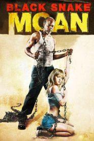 แรงรักดับราคะ Black Snake Moan (2006)