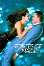 หลบพายุร้าย เจอพายุรัก Forces of Nature (1999)