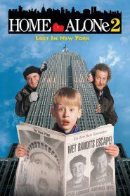โดดเดี่ยวผู้น่ารัก 2 ตอน หลงในนิวยอร์ค Home Alone 2: Lost in New York (1992)