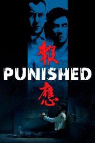 แค้น คลั่ง ล้าง โคตร Punished (2011)