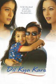 ฟ้าปรารถนา ชะตามิอาจรัก Dil Kya Kare (1999)