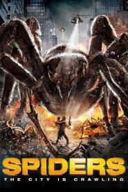 ฝูงแมงมุมยักษ์ถล่มโลก Spiders (2013)