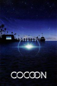 โคคูน สื่อชีวิต Cocoon (1985)