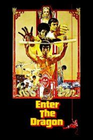 ไอ้หนุ่มซินตึ๊ง มังกรประจัญบาน Enter the Dragon (1973)