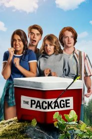 กล่องดวงใจ The Package (2018)