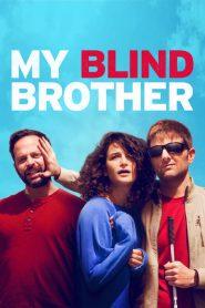 พี่ชายคนตาบอด My Blind Brother (2016)