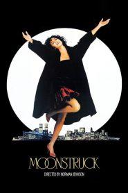 พระจันทร์เป็นใจ Moonstruck (1987)