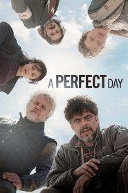 อะ เพอร์เฟ็ค เดย์ A Perfect Day (2015)