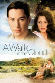 จะขอบูชาหัวใจเธอไว้ที่วิมานเมฆ A Walk in the Clouds (1995)