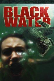 เหี้ยมกว่านี้ ไม่มีในโลก Black Water (2007)