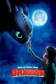 อภินิหารไวกิ้งพิชิตมังกร How to Train Your Dragon (2010)