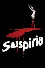 ดวงอาถรรพ์ Suspiria (1977)