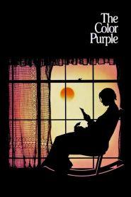 เลือดสีม่วง The Color Purple (1985)