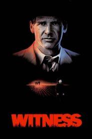 ผมเห็นเขาฆ่า Witness (1985)