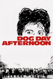 ปล้นกลางแดด Dog Day Afternoon (1975)