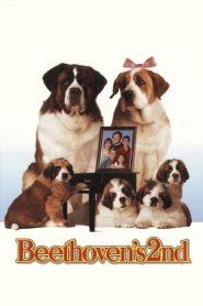 บีโธเฟน ชื่อหมาแต่ไม่ใช่หมา 2 Beethoven's 2nd (1993)