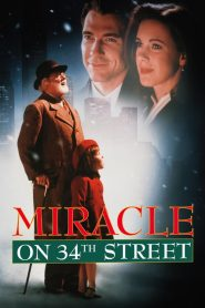 ปาฏิหารย์บนถนนที่ 34 Miracle on 34th Street (1994)