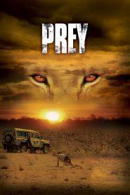 หนีนรกเขี้ยวนักล่า Prey (2007)