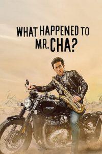 ชาอินพโย สุภาพบุรุษสุดขั้ว What Happened to Mr Cha? (2021)