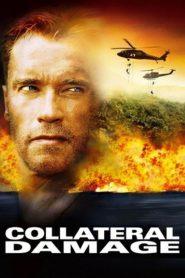 คนเหล็กทวงแค้น วินาศกรรมทมิฬ Collateral Damage (2002)