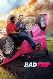 ทริปป่วนคู่อำ Bad Trip (2021)