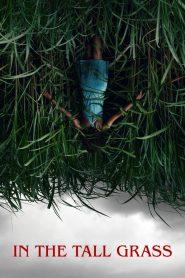 พงหลอนมรณะ In the Tall Grass (2019)