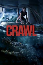 คลานขย้ำ Crawl (2019)