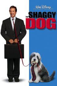 คุณพ่อพันธุ์โฮ่ง The Shaggy Dog (2006)