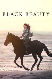 แบล็คบิวตี้ Black Beauty (2020)